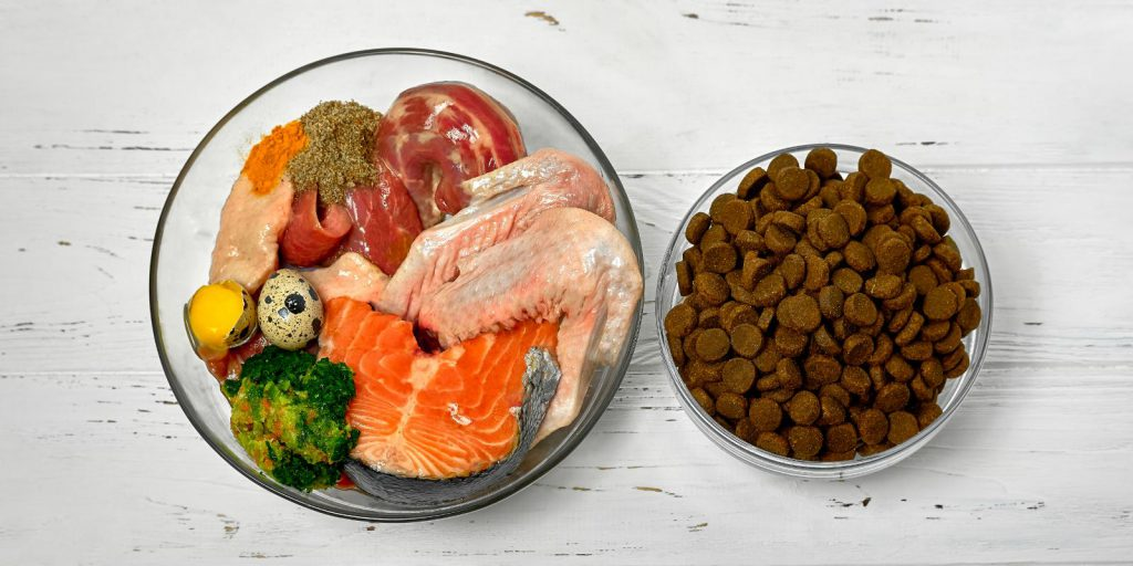 BARF Starters Blog, Transition, Kibble, raw food