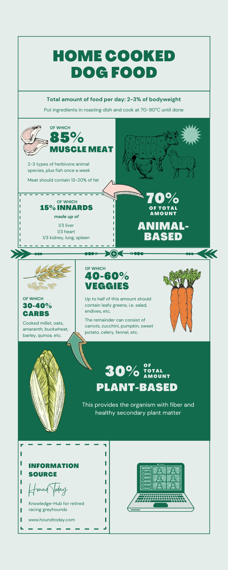 infographic outlining how to cook for dogs, homemade dog food
